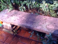 Garden bench before cleaning
